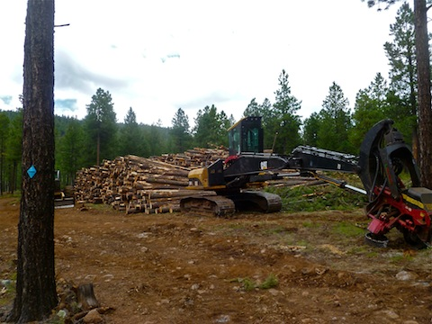 Pierce Spring logging operation.