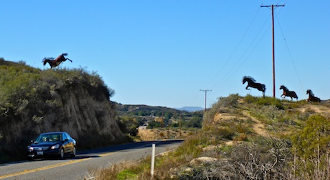 Those are not real mustangs leaping CA-79, east of Temelcula: They are sculptures from metal artist Ricardo Breceda.