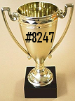Cup #8247
