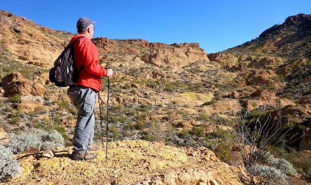 Preston McMurry gazing out at the Goldfield Mountains.