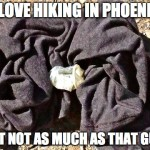I love hiking in Phoenix, but not as much as that guy. (2016)