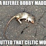 SFA referee Bobby Madden: Gutted that Celtic won. (2016)