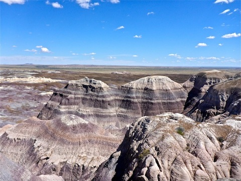"Dense purple and blue strata are ""mudstones and siltstones of the Blue Mesa Member of the Chinle Formation"" and are 223 million years old."
