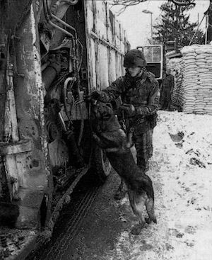 Sr. Airman Matthew Arpano and his dog Ringo check vehicles entering the Tuzla compound.