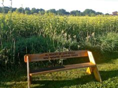 Memorial bench on bike path along WI-23.