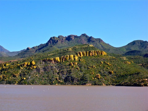 The Yellow Cliffs' color is caused by lichen, not Mexican Gold Poppies.