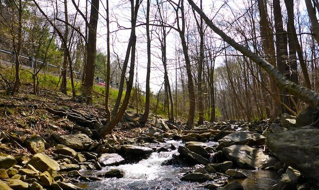 Little Antietam Creek