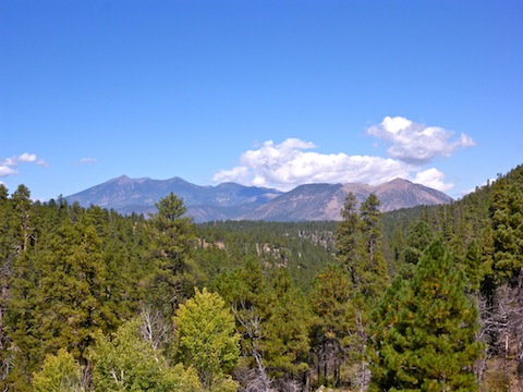 From the OP, looking down Walnut Canyon, towards the San Francisco Peaks and Mount Elden. I had 3-4 bar Verizon reception.