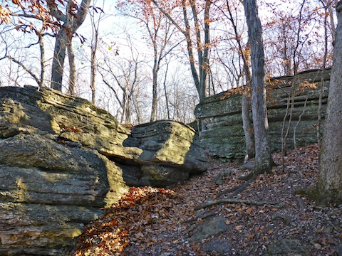 Though not massive, the limestone outcroppings on Bethany Falls Trail were larger & more interesting than those on the Wildlife Habitat Trail.