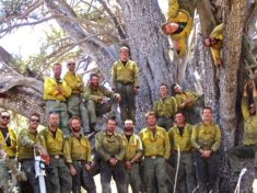 Granite Mountain Hotshots at the alligator juniper they saved during the Doce Fire. The tree is believed to be the world's oldest and largest alligator juniper. Chris MacKenzie (photographer) and Eric Marsh are not pictured. I recognize Andrew Ashcraft and Brendan McDonough (bottom, 2nd and 3rd from left). If anyone can identify the other hotshots, please let me know.
